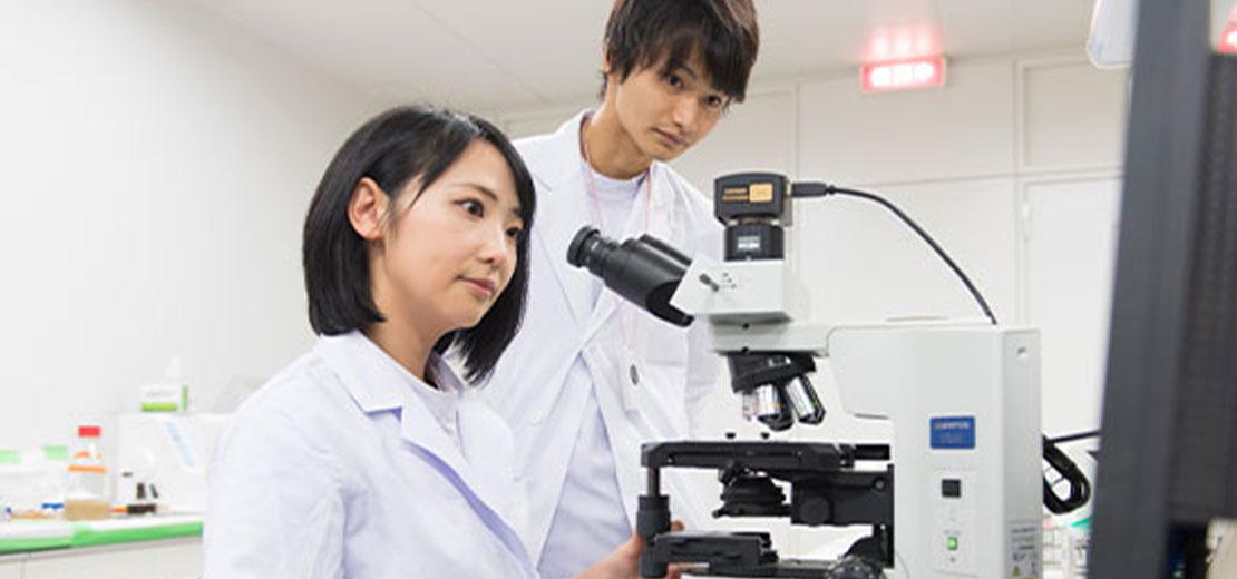 Kyushu University Faculty of Dental Science - 九州大学 歯学